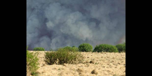 Incendie dans les Fagnes : 1.000 hectares de végétation ravagés - La DH