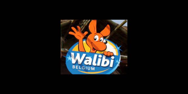 Pas de Vertigo à Walibi cette année - La DH
