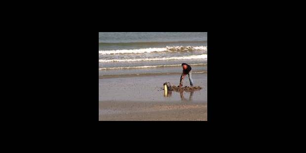 Ostende: zone de baignade interdite jusqu'à samedi soir - La DH