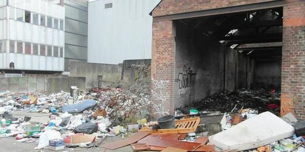 10.000 tonnes de déchets évacués en 2013 - La DH
