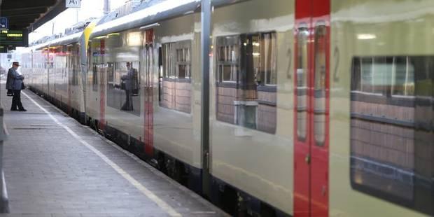 Une adolescente de 13 ans est décédée après avoir été percutée par un train - La DH