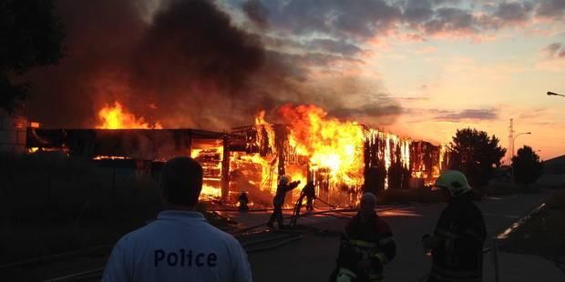 Achêne: le site incendié de Structurewood pillé et vandalisé - La DH