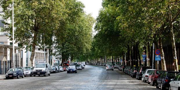 Bruxelles: Le réaménagement de l'avenue du Port au point mort - La DH