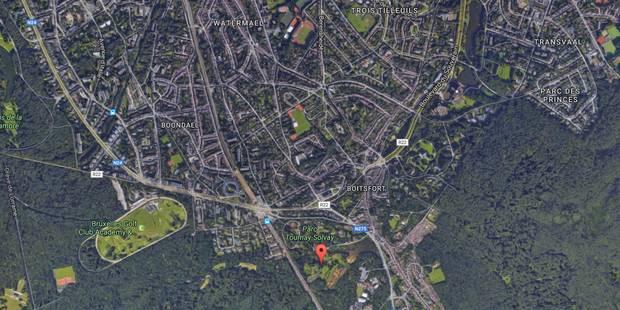 Arrestation après une agresssion sexuelle au parc de Boitsfort - La DH