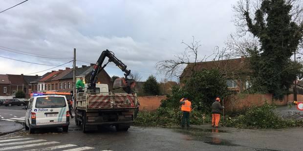 Mons-Centre: l'orage a provoqué quelques dégâts - La DH