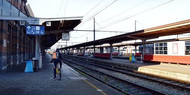 Tournai: Delannois et Bellot se renvoient la balle - La DH