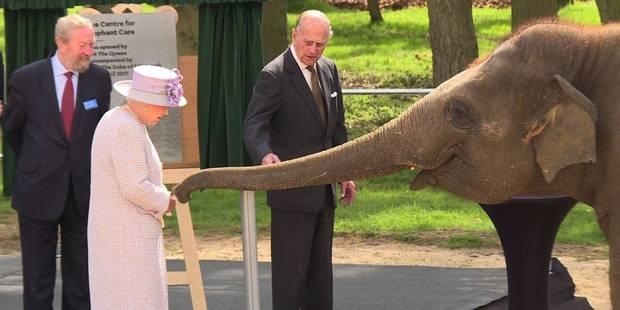 Grande-Bretagne: la reine inaugure un centre de soins pour éléphants - La DH