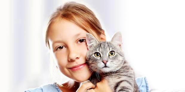Devenir un maître responsable pour votre chat - La DH
