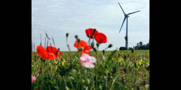 Les éoliennes vont-elles parsemer notre paysage ? - La DH