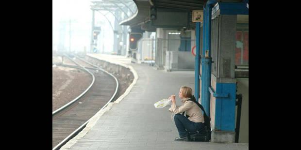 Le rail en grève ce 14 novembre ? - La DH