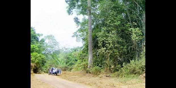 10 Belges empoisonnés   au Cameroun - La DH