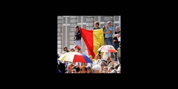 Quelques centaines de participants à la commémoration Pro Belgica - La DH