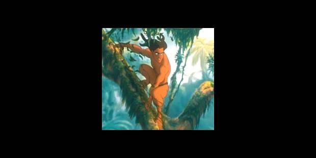 Tarzan et l'informatique - La DH