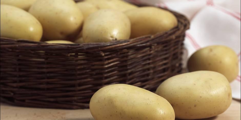 La pomme de terre plus chère, la frite pas encore