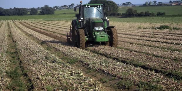 L'Europe va réduire de 4% les aides agricoles 2014