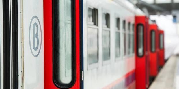 Un jeune homme happé par un train en gare de Louvain-la-Neuve - La DH