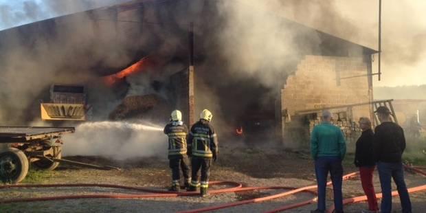 Le feu ravage un hangar agricole à Bouffioulx - La DH