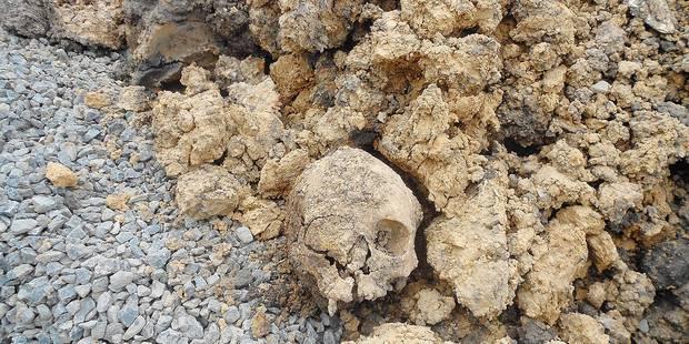 Un crâne en plein air à Templeuve - La DH