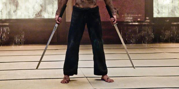 Déguisé en ninja, il est poursuivi pour avoir donné un coup de sabre - La DH
