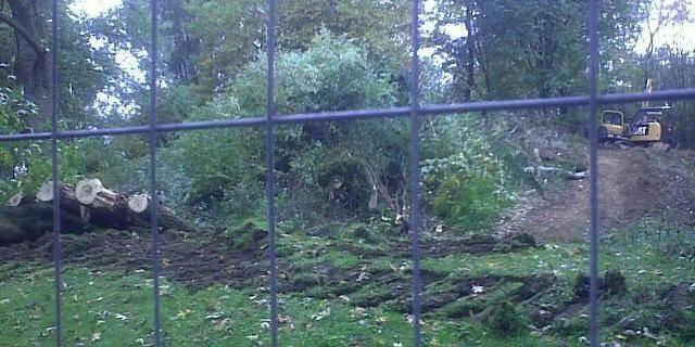 ULB: Des opposants à un projet immobilier attachés à des arbres