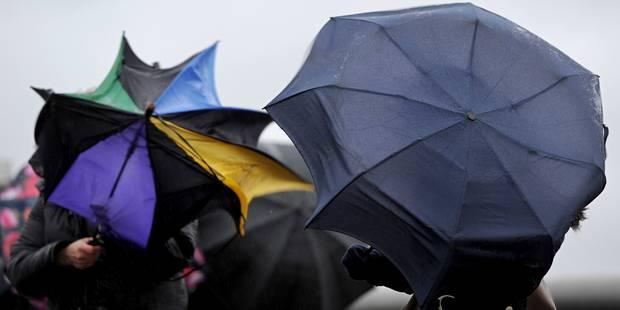 Les parcs bruxellois fermés jeudi en raison des rafales de vent - La DH