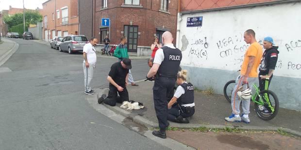 La police sauve un chien attaché à un arbre - La DH