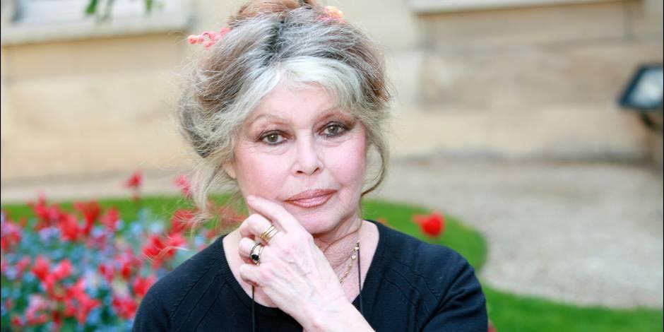 """Brigitte Bardot écrit une lettre """"antifourrure"""" à Choupette, la chatte de Karl Lagerfeld"""