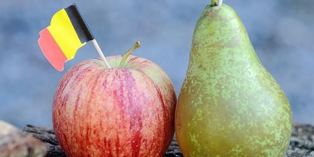 """Pommes : """"4.000 € de perte par hectare"""" - La DH"""