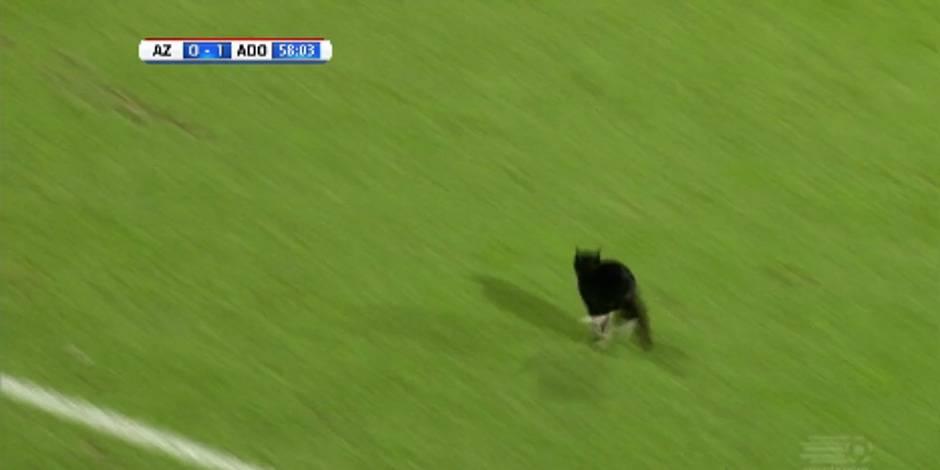 "Un ""streaker"" inattendu en Eredivisie (VIDEO)"