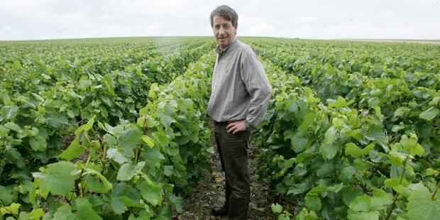 Le vin belge prend de la bouteille - La DH