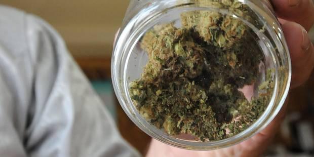 Du cannabis sous le sapin - La DH