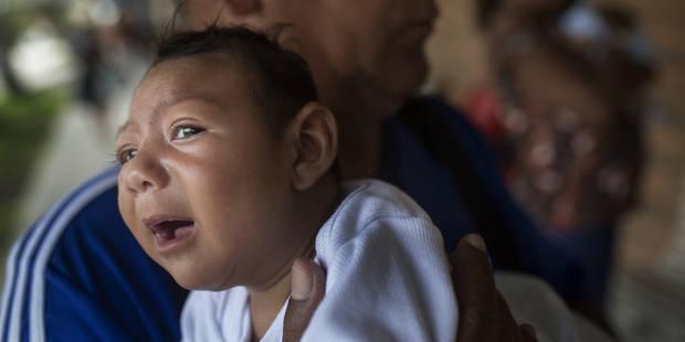 """""""Le risque de propagation du Zika en Belgique est quasi inexistant"""", affirme De Block - La DH"""
