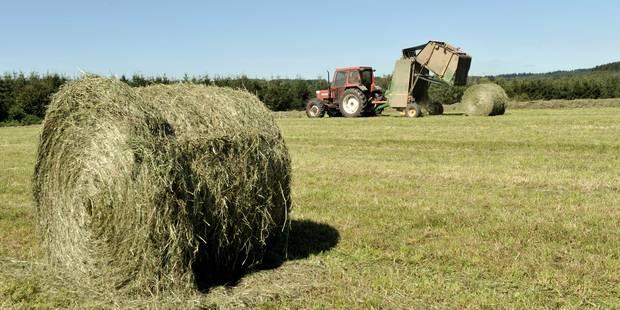Un agriculteur décède écrasé par un ballot de paille à Pepinster - La DH