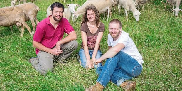 Les derniers bergers bruxellois dans le flou - La DH