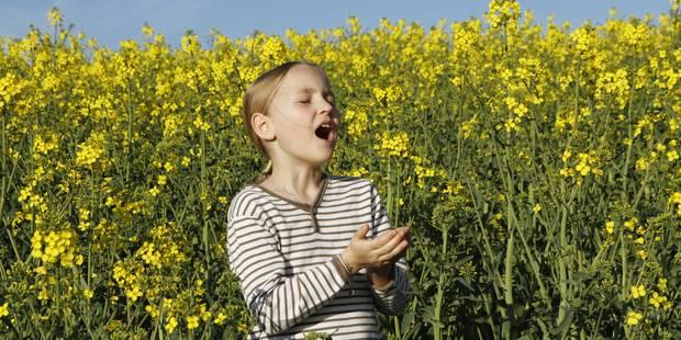 Pollen: la période à risque a commencé - La DH