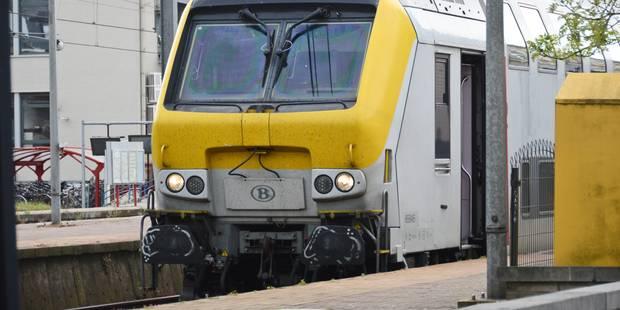 Circulation ferroviaire rétablie sur la ligne 140 entre Charleroi-Ouest et Fleurus - La DH