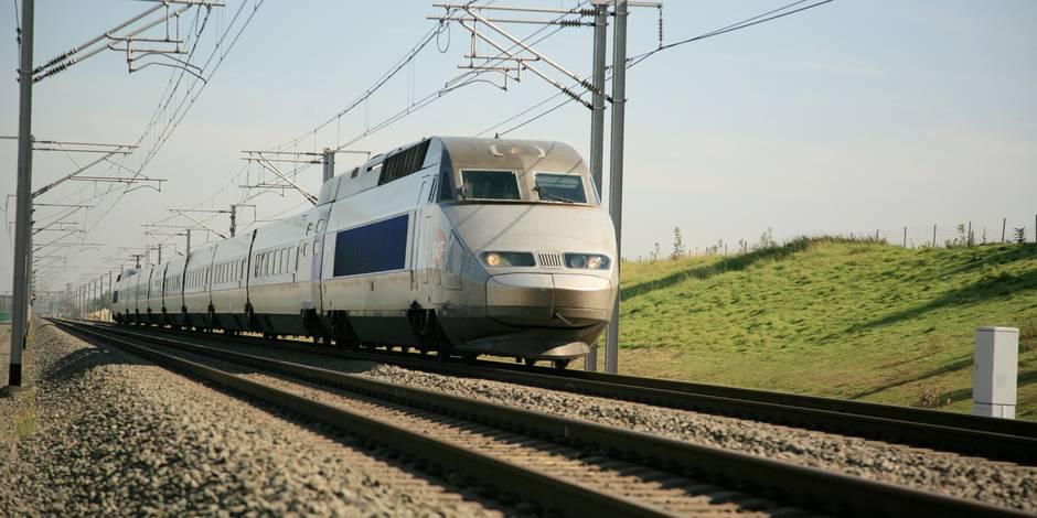 """Projet de gare TGV non loin de Pairi Daiza : """"stupéfaction"""" pour navetteurs.be"""