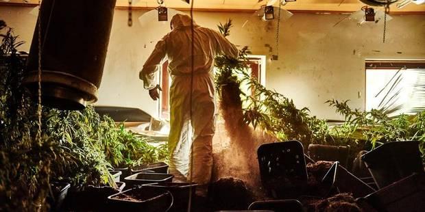 BW: explosion des faits liés aux stupéfiants - La DH
