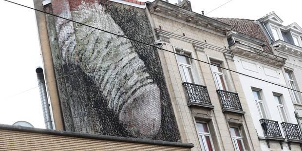 Mobilisation Pour Conserver La Fresque Du Pénis Le Zizi