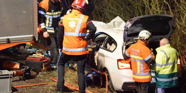 Philippeville: Une voiture percute un sanglier puis s'encastre dans un arbre (VIDEO) - La DH