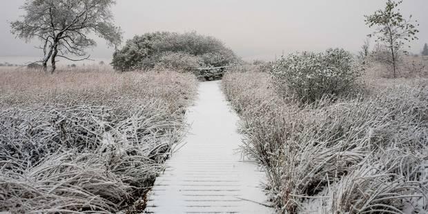 Verglas et brouillard pour ce week-end, de la neige pour lundi !