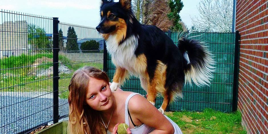 Votre chien peut-il marcher dans les traces de Lassie, Beethoven, Lucky, etc. ?