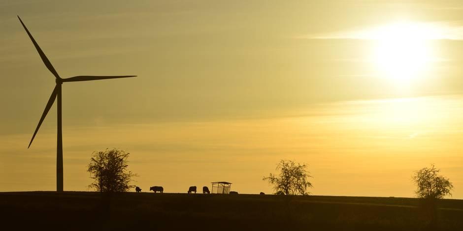 Éoliennes à Nivelles : WindVision provoque la déception…
