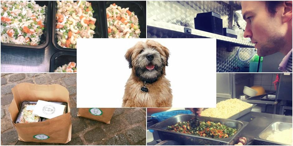 Dog Chef cuisine pour votre toutou