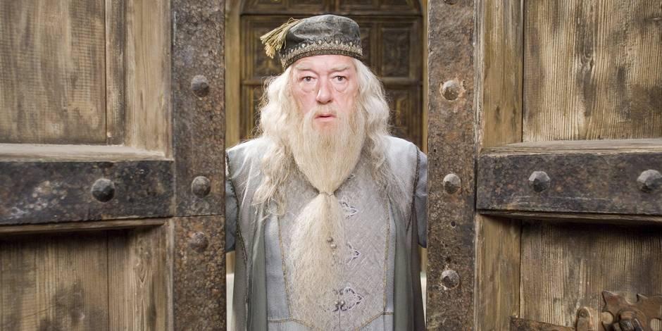 Qui pour jouer le rôle de Dumbledore jeune ? Un acteur plutôt séduisant...