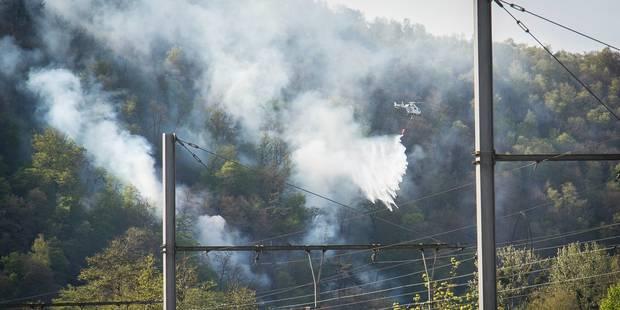 L'incendie dans les bois du Sart-Tilman est sous contrôle et maîtrisé (PHOTOS) - La DH