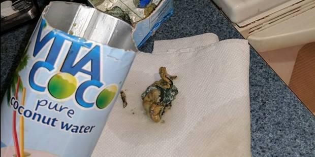 Une américaine fait une découverte immonde dans sa brique d'eau de coco - La DH