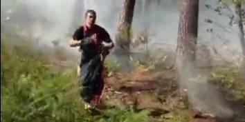 Important feu de forêt du côté de Genappe (VIDEO) - La DH