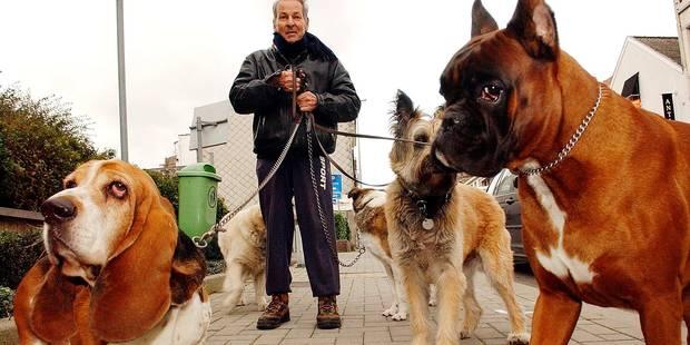 L'alternative à la pension pour chiens - La DH