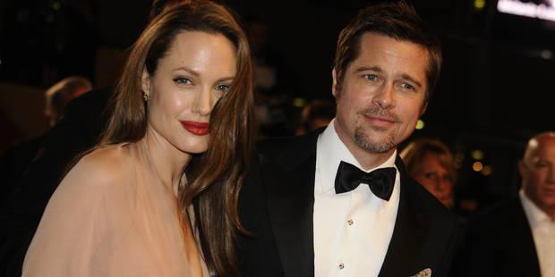 Brad Pitt et Angelina Jolie condamnés à payer un demi-million d'euros à une artiste française - La DH